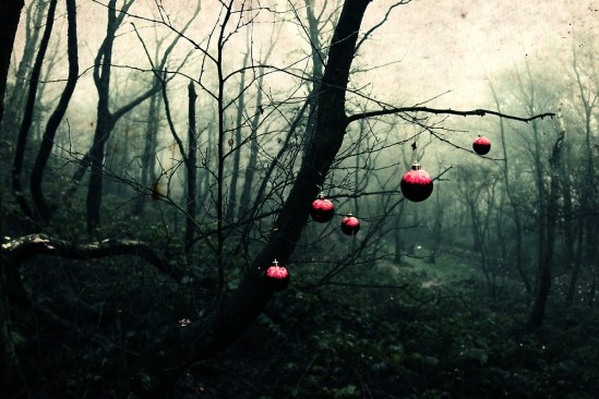 creepy christmas woods.jpg